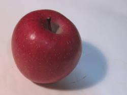 りんご20131210-2.jpg