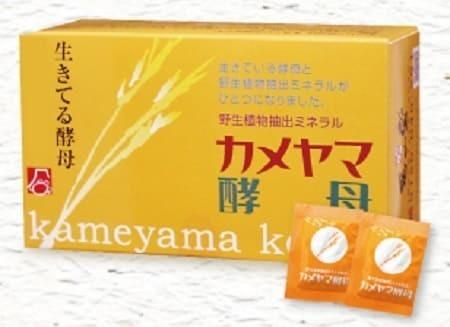 カメヤマ酵母0330 - コピー.jpg
