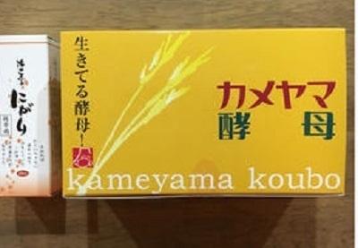 カメヤマ酵母0414.jpg